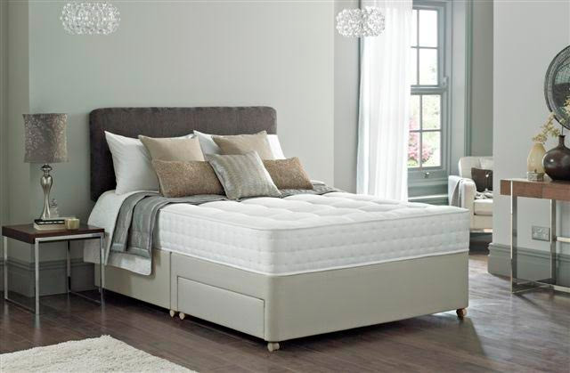 Sealy Ortho Backcare Excel Divan Beds For Sale Ramsdens